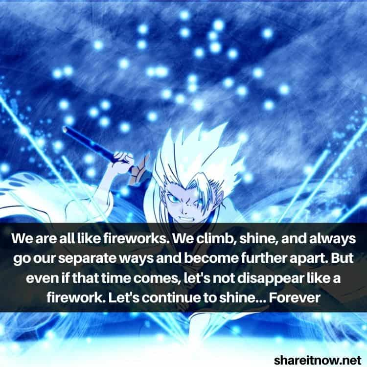 Toshiro Hitsugaya quotes